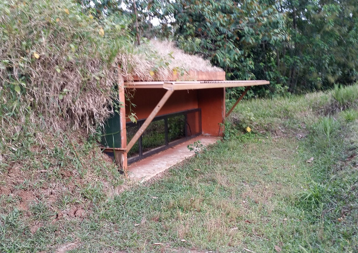 The King Vulture Hide